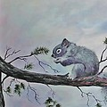 Squirrel by Peggy Miller