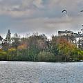 St. James Park In London by Jack Schultz