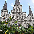 St Louis Cathedral Rising Above Palms Jackson Square New Orleans Poster Edges Digital Art by Shawn O'Brien