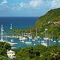 St Lucia by Brian Jannsen