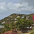 St Maarten Rooftops by Carol  Bradley