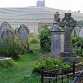 St. Nicholas Graveyard I by Sheila Rodgers