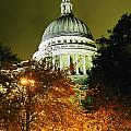St Pauls Cathedral At Night With Trees by Axiom Photographic