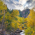 St Vrain Canyon Autumn Colorado View by James BO  Insogna