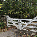 Stable Gate by Susan Herber