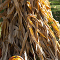 Stacked Stalks And Placed Pumpkin by Michael Flood