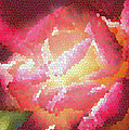 Stained Glass Rose by Mick Anderson