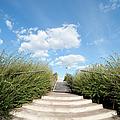 Stairs To The Big Blue Sky by Artur Bogacki