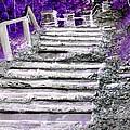 Stairway To Heaven by Rhonda Barrett