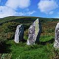 Standing Stone Alignment, Near by The Irish Image Collection