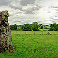 Stanton Drew Standing Stone by Jan W Faul
