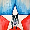 Star Appeal by Susan Herber