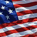 Star Spangled Banner - D001883 by Daniel Dempster