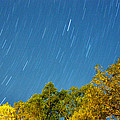 Star Trails On A Blue Sky by Kay Lovingood