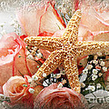 Starfish And Pink Roses by Andee Design