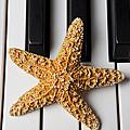 Starfish Piano by Garry Gay