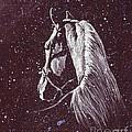 Starlight Serenade by Angela Marks