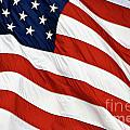 Stars And Stripes - D004586 by Daniel Dempster