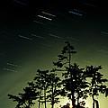 Startrails And Moonlit Fog, Canada by David Nunuk