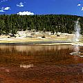 Steam At Firehole Lake by Paul Cannon