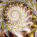 Steampunk - Spiral - Time Iris by Mike Savad