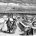 Steamships: Deck, 1870 by Granger