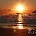 Steamy Sunrise by Nadine Kelly
