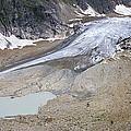 Stein Glacier, Switzerland by Dr Juerg Alean