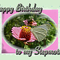 Stepmother Birthday Greeting Card - Butterfly On Flower by Mother Nature