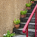 Steps In Kagurazaka Tokyo Japan by Bryan Mullennix