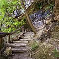 Steps To The Cave by Lisa  Spencer