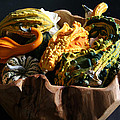 Still Life With Gourds by Monika A Leon