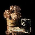 Still Life With Hydrangea And Camera by Jill Battaglia