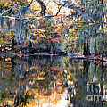 Still Waters - Autumn Reflections by Lana Trussell