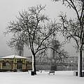 Stillwater Blizzard by Crystalline Photography