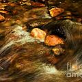 Stone Mountain River Rocks by Adam Jewell