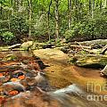 Stone Mountain Stream by Adam Jewell