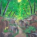 Stone Ravine by Elizabeth Janus