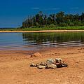 Stones On The Beach by Doug Long