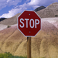 Stop Sign In South Dakota Badlands by Will & Deni McIntyre