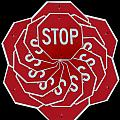 Stop Sign Kalidescope by Denise Keegan Frawley