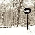Stop Snowing by John Stephens