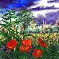 Storm Clouds And Poppies by Glenn Marshall