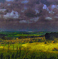 Storm Clouds Over Meadow by Michael Goyberg