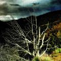 Storm Over The Jemez Mountains by Ellen Heaverlo