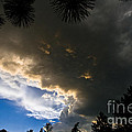 Stormy Sky by Terry Elniski