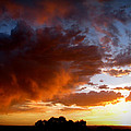 Stormy Sunset Over A Tree Canopy by Aaron Burrows