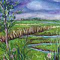 Stormy Wetlands by Clara Sue Beym