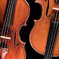 Stradivarius Violin And Maggini Viola by Endre Balogh