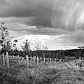 Strange Clouds by Kevin Askew